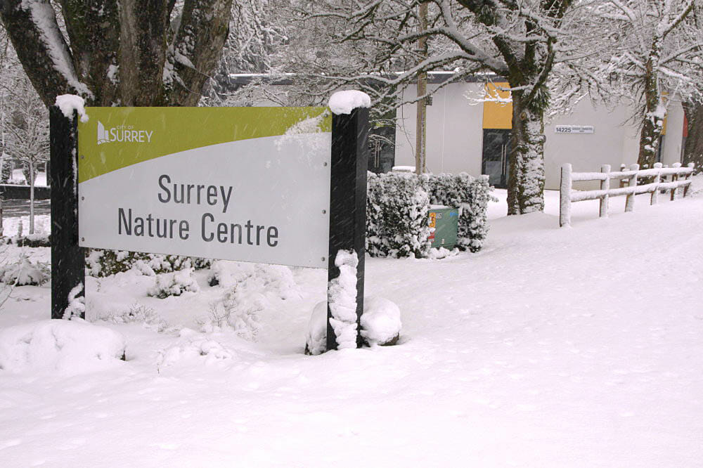Surrey Nature Centre at Green Timbers