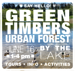 Say Hello to Green Timbers June 16, 2109